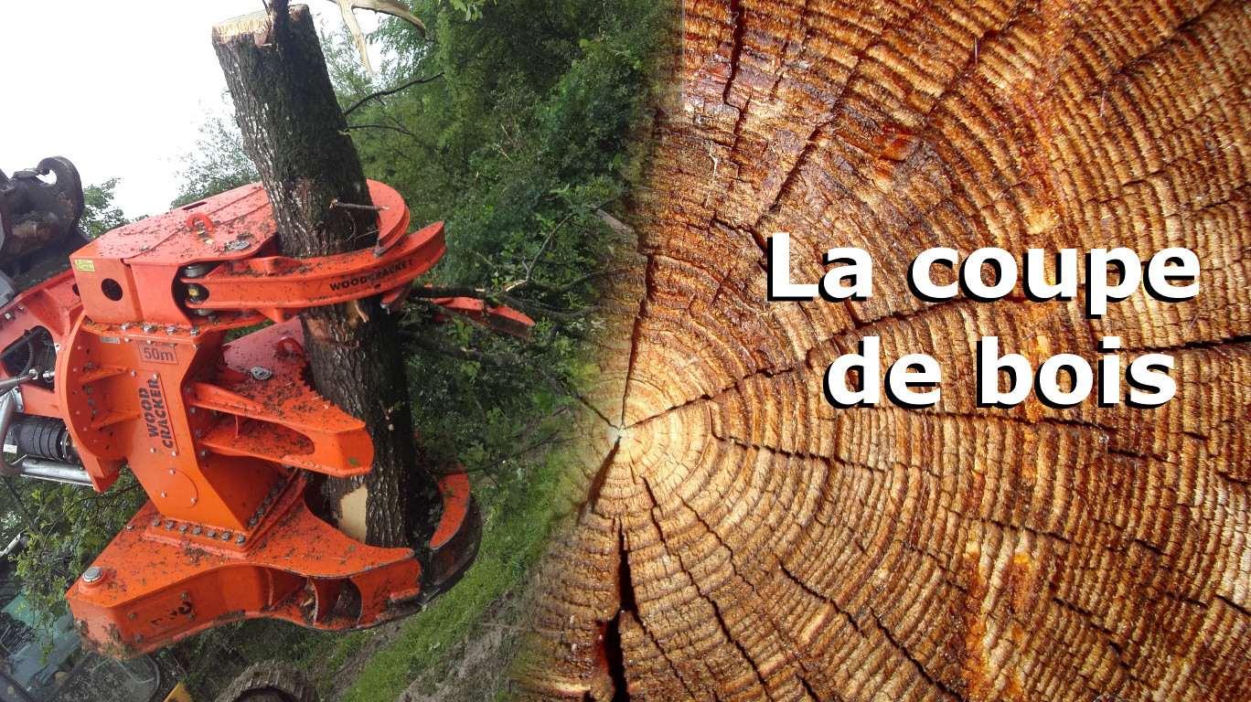 la-coupe-de-bois-2-www.cuma-compost71.fr